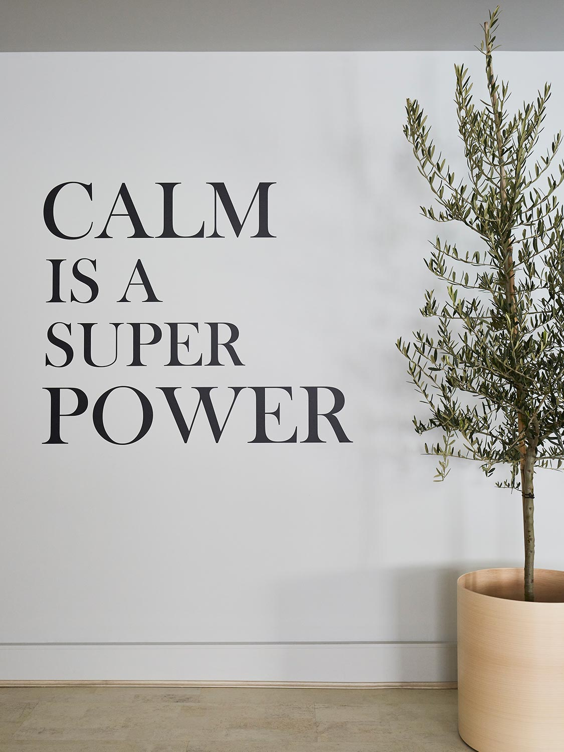 calm is a super power inspirational picture